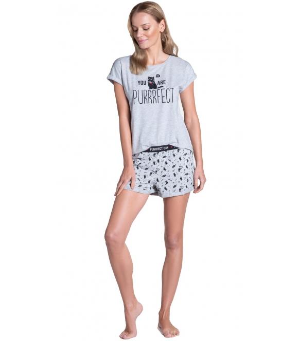 młodzieżowa piżama damska bawełniana henderson ladies timber szara dwuczęściowa krótki rękaw motyw słodkich kotków