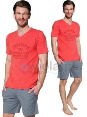 bawełniana piżama męska marcel 2197 firmy taro koszula krótki rękaw z nadrukiem spodenki krótkie z kieszeniami wzór krata