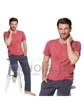 męska piżama bawełniana krótki rękaw dekolt półokrągły spodnie granat w kratę długie z kieszeniami taro Jeremi 2199